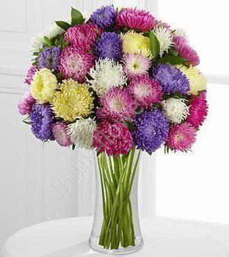 Купить цветы астра в москве торт - цветы из карамели на заказ